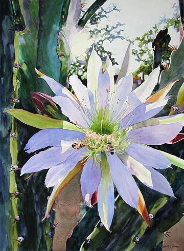 Kat O'Connor cactus bloom Arizona White Stallion Ranch watercolor painting